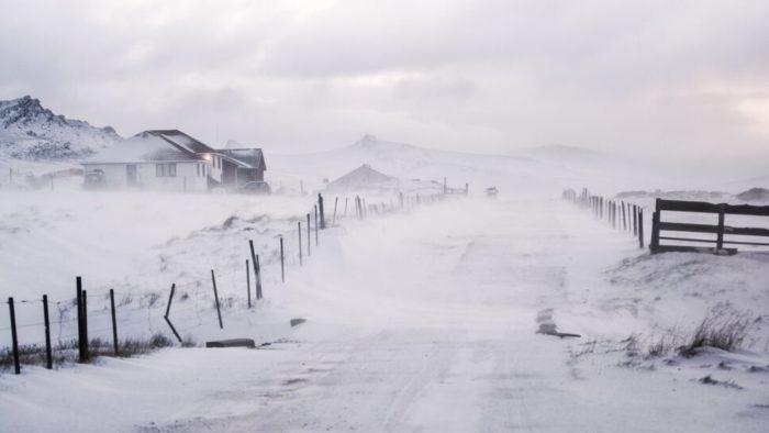 Falklands Ultra snow